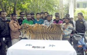 photo-satkhira-tiger-news--1