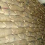 কুমিল্লার তিতাসে গরিবের ১০ টাকার চা'ল ১৮ টাকায় বিক্রি আড়ৎদারসহ আটক ২