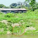 অবৈধভাবে পানি তুলছে ভারত